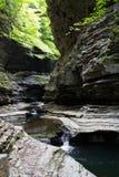 Watkins Glen State Park Stream 2 Royalty Free Stock Photography