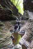 Watkins Glen State Park Stream und Wasserfall Lizenzfreies Stockbild