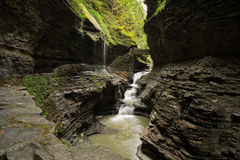 Watkins Glen Waterfall Royalty Free Stock Image