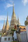 Watpho thailand†‹ Royalty-vrije Stock Foto