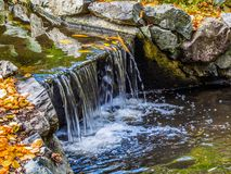 Watrestream during autumn season  in the public Beacon Hill Park Royalty Free Stock Image