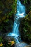 Watson Creek Oregon Fall Colors Royalty Free Stock Image