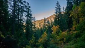 Watson Falls immagine stock