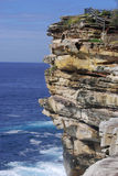 Watsons Bay Cliff in Sydney. NSW Australia Royalty Free Stock Photos