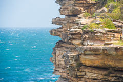 Watsons Bay. The Gap on a sunny day in Watsons Bay Sydney Royalty Free Stock Photos
