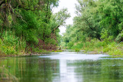 A watter channel in the Danube Delta Stock Photography