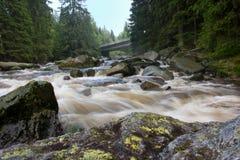 Watter que fluye del río de Vydra imagen de archivo libre de regalías
