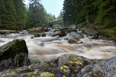 Watter scorrente del fiume di Vydra immagine stock libera da diritti