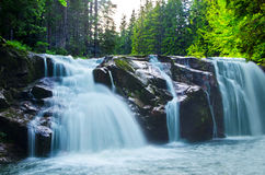 Watterfall. Cascading waterfall in deep wood Royalty Free Stock Image