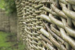 Wattle. And daub woven structure detail Royalty Free Stock Image