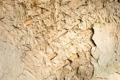 Wattle and daub wall texture Royalty Free Stock Photo