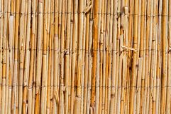 Wattle Fence Stock Photos