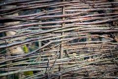 Wattle wooden fence Stock Photos