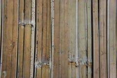 Wattled竹子席子 库存图片