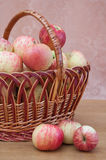 Wattled basket with apples Stock Photography