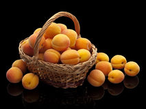Wattled basket with apricots Royalty Free Stock Image