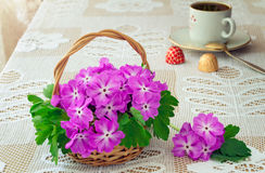 Wattled basket with blossoming violets on a table. Stock Images