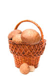 Wattled basket with ceps Stock Images