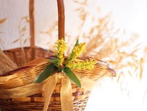 Wattled basket closeup Royalty Free Stock Images