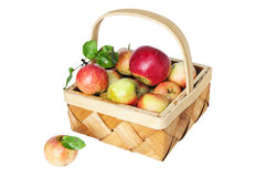Wattled basket full of ripe apples Stock Images