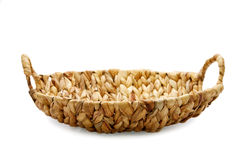 Wattled basket isolated Royalty Free Stock Photo