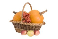 Wattled basket with two pumpkins Royalty Free Stock Image
