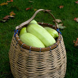 Wattled basket with vegetable marrows. Crop of vegetable marrows in a wattled basket on a grass Royalty Free Stock Photo