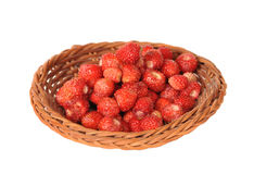 Wattled basket with wild strawberry. Small wattled basket with wild strawberry Royalty Free Stock Photos