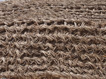 Wattled fence from dry palm branches Stock Image