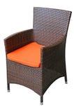 Wattled krzesło Zdjęcia Royalty Free