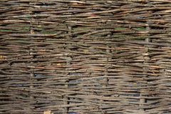 Wattled staket royaltyfri fotografi