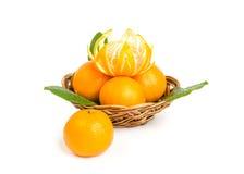 wattled tangerines плиты Стоковые Фото
