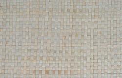 wattled textur Royaltyfria Bilder