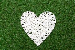 Wattled white heart recumbent on grass Stock Image
