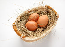 Wattled willow basket with brown chicken eggs Royalty Free Stock Photo