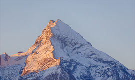 Watzmann in the morning Royalty Free Stock Image