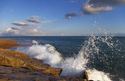 wave Arkivbild