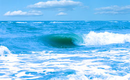 Wave. Sea landscape with wind and wave Stock Photos