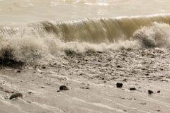 wave Royaltyfri Fotografi
