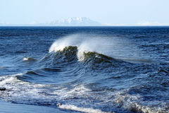 Wave. Beautiful wave beside seasides of the pacific ocean Royalty Free Stock Image