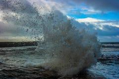 wave arkivbilder