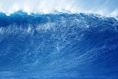 Wave abstract background concept Royalty Free Stock Photos