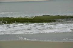 Wave alla spiaggia fotografia stock libera da diritti