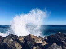 Wave arrabbiato Fotografie Stock Libere da Diritti