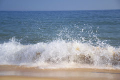 Wave in a beach Stock Image