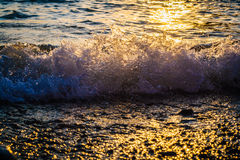 Wave on the beach. Water splashes. Sunlight on waves Royalty Free Stock Images