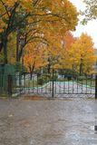 Wave. Beautiful view on public park with old lantern, metal gate and trees covered bright yellow foliage in rainny autumn day Stock Photos