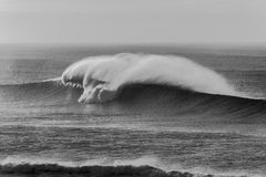 Wave Black White Spray Contrasts Stock Images