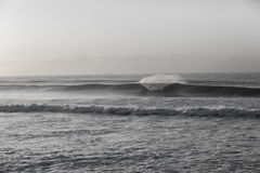 Wave Black white Swells. Ocean wave wall crashing along beach coastline vintage black and white Royalty Free Stock Photos