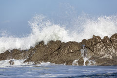 Wave breacking against the rocks Royalty Free Stock Photography
